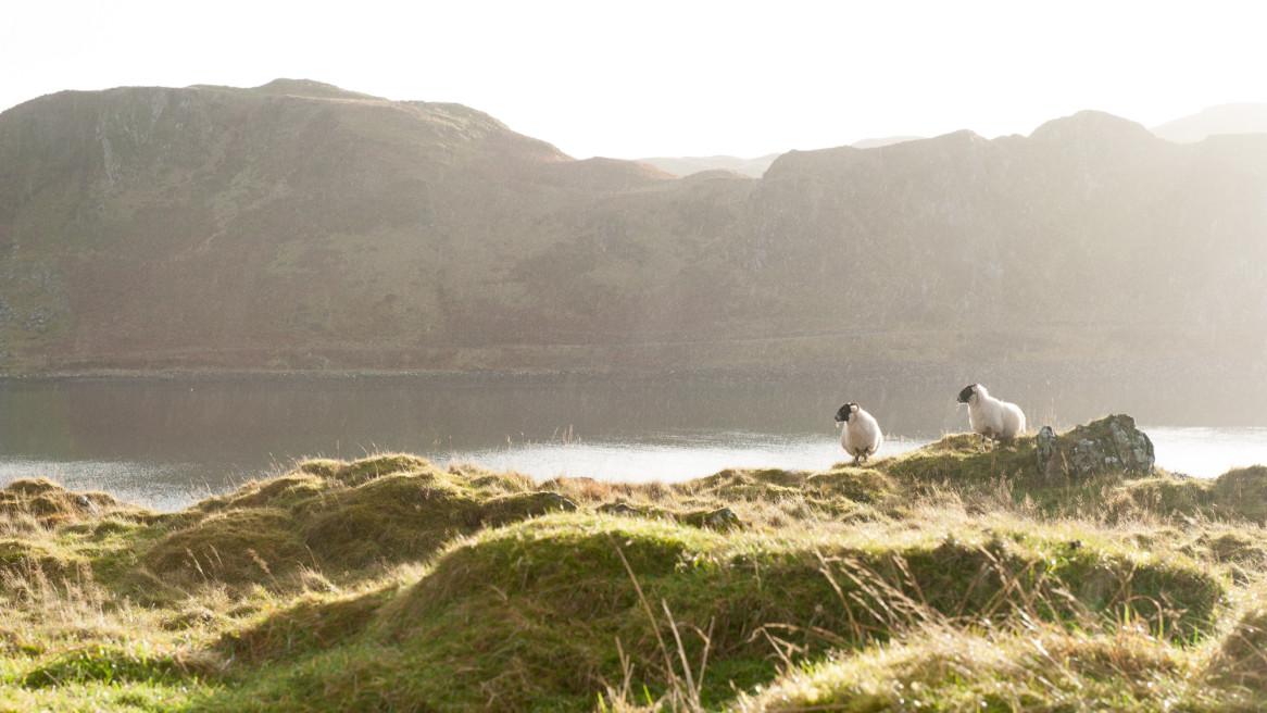 Road.England.Wales.Schottland